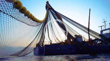 nets, boat