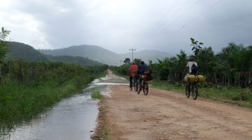 Men carrying palm oil fruits on their bicycles near plantations in Honduras
