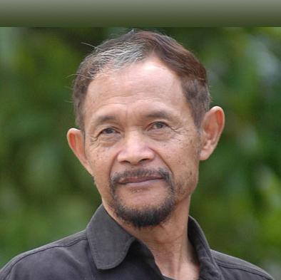 Goenawan Mohamad ICIJ member